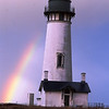 Lighthouse, Rainbow, Seagull, Oregon Coast