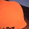 Dune 48, Sossoullevei, Namibia