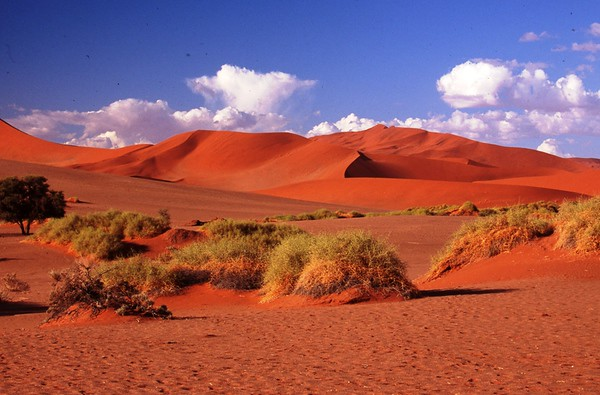 Sossouslevi, Namib Desert, Namibia