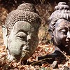 Fallen Buddha Heads, Chiang Mai, Thailand
