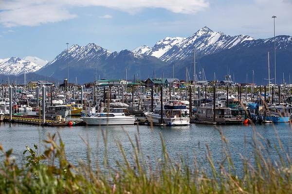 Harbor in Homer, Alaska