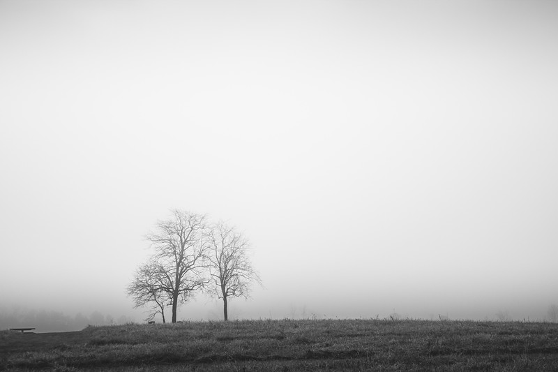 Landscapes in Black and White