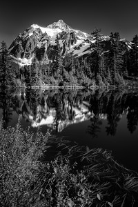 Mt Shuksan Reflection - BW Portrait