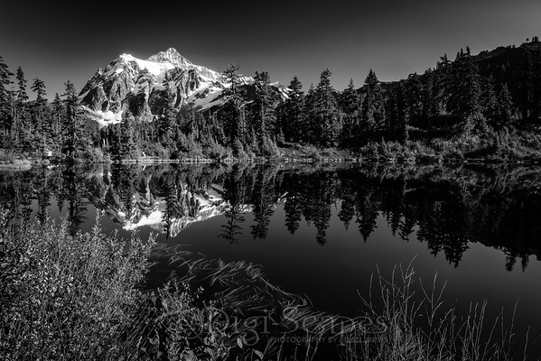 Mt Shuksan Reflection - BW Landscape