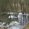 Een bevroren plas in De Schorre