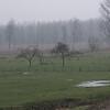 Een polderlandschap in de buurt van de Schelde