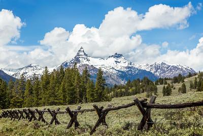 Pilot Peak and Fence
