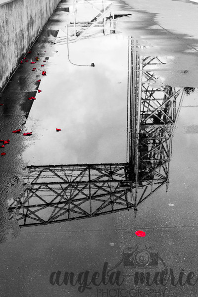 Rose Petals and in Lift Bridge Reflection