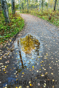 Fall colors reflected at Itasca State Park