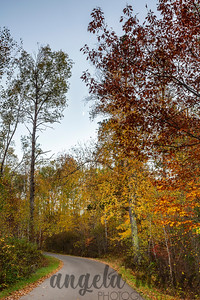 Crescent Moon and Fall Colors at Itasca State Park, Minnesota