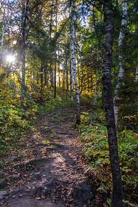 Path through the woods in Jay Cooke State Park near Carlton, Minnesota