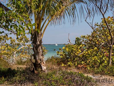 Sailboat on the gulf - taken on Sanibel Island, Florida