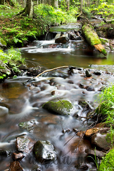 A creek in the Porcupine Mountain area of Michigan.