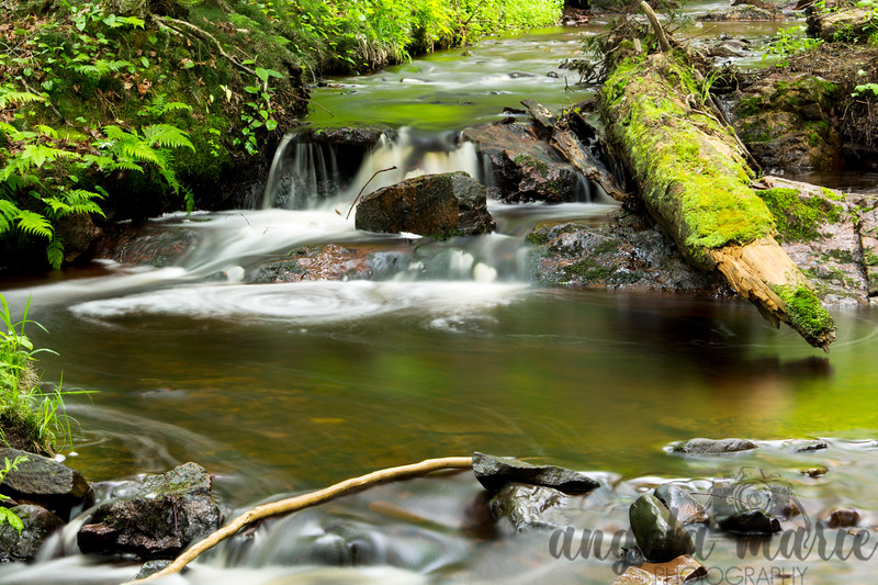 Close up of creek in the Porcupine Mountain are of Michigan