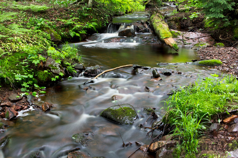 A creek in the Porcupine Mountain area of Michigan