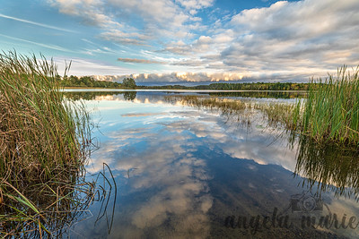 Mississippi Reflection - Northern Minnesota