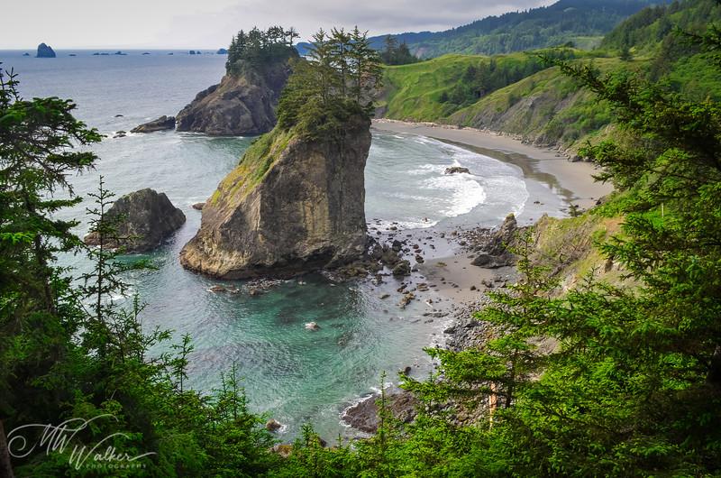Oregon Cove