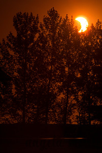 Solar eclipse on May 20, 2012. Taken in Rendezvous Park in West Fargo, ND