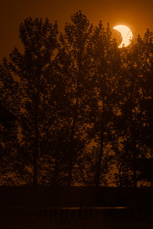 Solar eclipse on May 20, 2012. Taken in Rendezvous Park in West Fargo, ND. The less orange version of the previous photo.