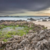 Low Tide at Pescadero Beach
