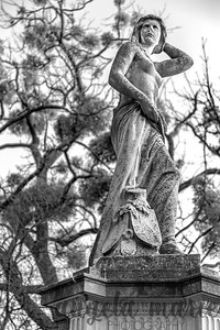 A statue in Stadtpark in downtown Vienna. I liked how the round tree shaped in the background contrast with the lines of the statue.