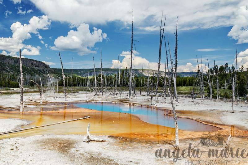 Opalescent Pool - Black Sand Geyser Basin