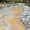 Thermal Geyser Runoff II - Upper Geyser Basin