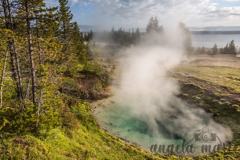 Bluebell Pool - West Thumb Geyser Basin