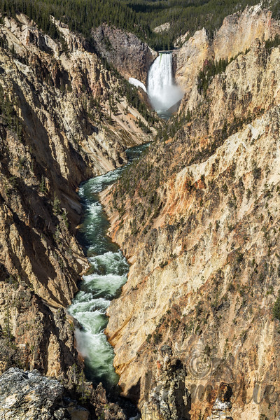 Lower Falls and Canyon