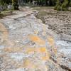 Upper Geyser Basin Runoff