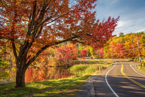 Autumn at Big Pocono State park. PA