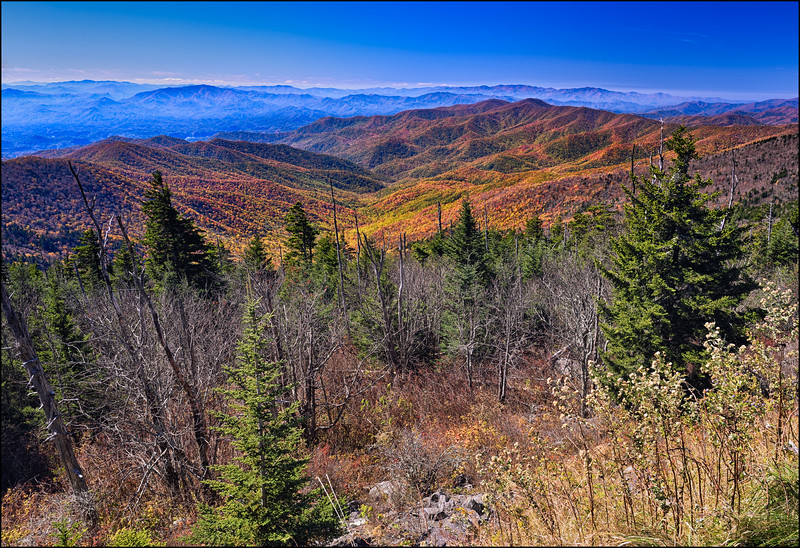 Great Smokies Fall Color