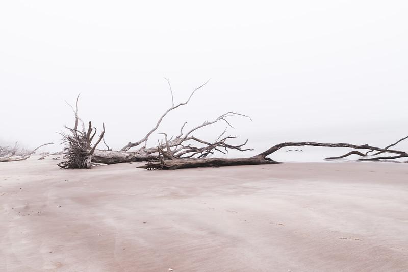Driftwood Down