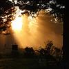 Early Morning Sunbeams