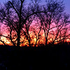 Love the color God sometimes paints in the sky at Sunset!