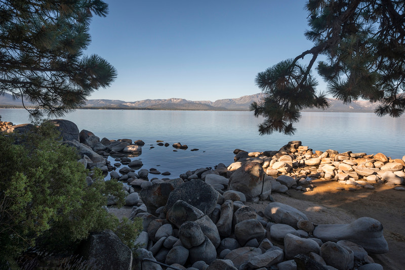 Beach Rocks with Pine