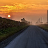 Southern Illinois Country Road, Dawn
