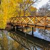 A Footbridge in Autumn