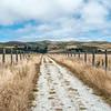 Cowell-Purisma Trail