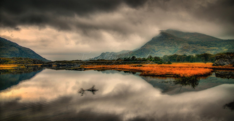 Ireland Reflections