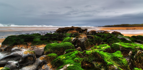 Mossy Rocks, Southwest Coast of Ireland