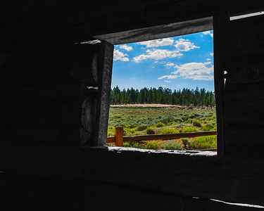 A Window on Nature