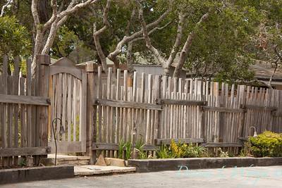 Fencing_004