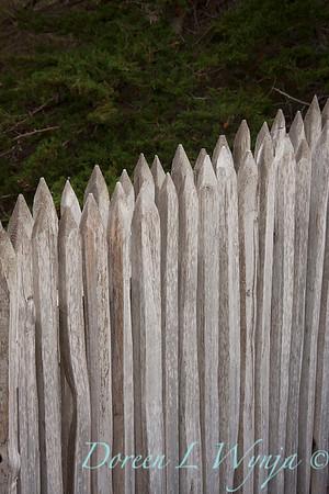 Fencing_047