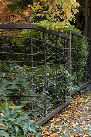 Custom metal fence - Helleborus fall landscape_5345
