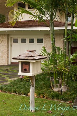 Dypsis cabadae - decorative mailbox_003