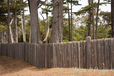Fencing_018