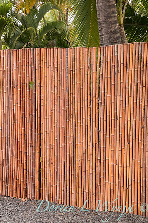 bamboo strapped together for a privacy fence