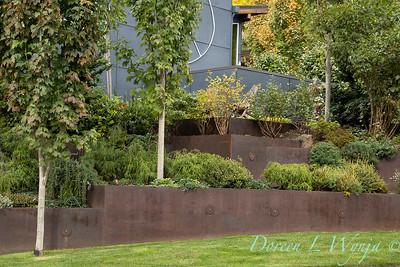 corten terraced retaing wall_7111