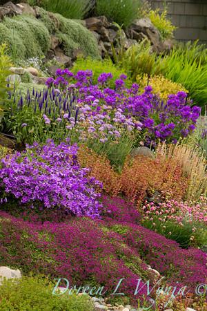 Cottage Garden_7600
